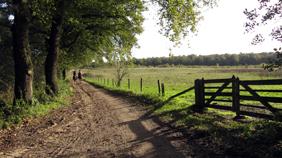 Boterweg Beek Montferland